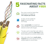 5 Fascinating Facts about Fiber